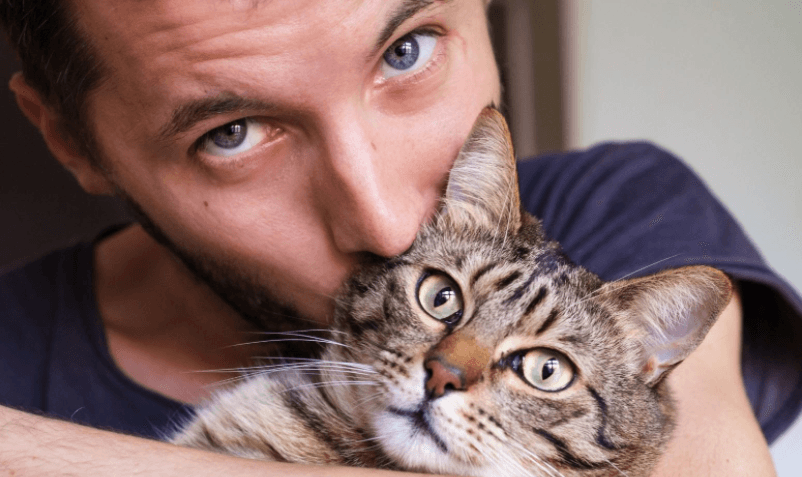 Why Do Cats Bite Their Owners Hair